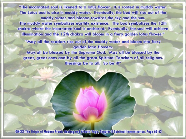 incarnated soul and lotus flower